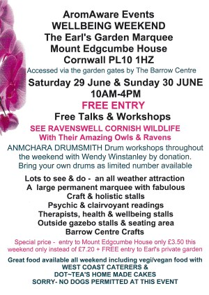 AromAware Events WELLBEING WEEKEND