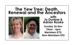 The Yew Tree: Death, Renewal and the Ancestors