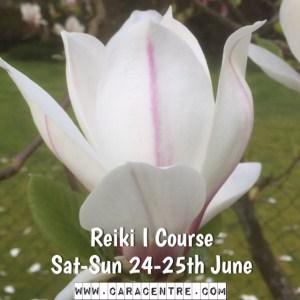 Reiki I Course
