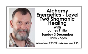 Alchemy Energetics - Level Two Shamanic Healing