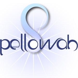 Pellowah Healing Technique Course