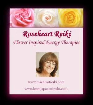 Reiki First Degree (Shoden) ~ Beginners