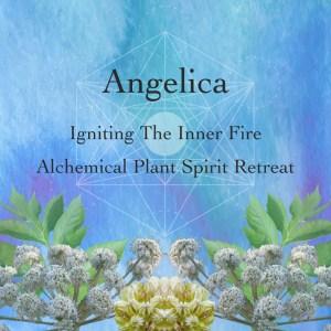 Angelica Alchemical Plant Spirit Retreat