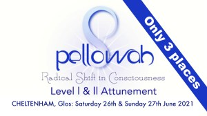 Pellowah Level 1 & 2 - 2 Day Workshop