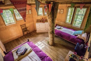Norfolk Luxury Treehouse Well Being Meditation Retreaet